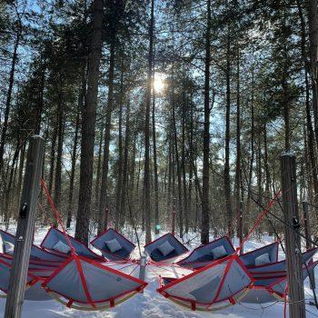 Skogsfloating verbindt en vernieuwt in alle seizoenen